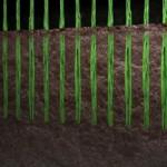 Nederlands Elftal speelt op hybride gras